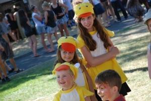 Festivale 2014 - Click to Open